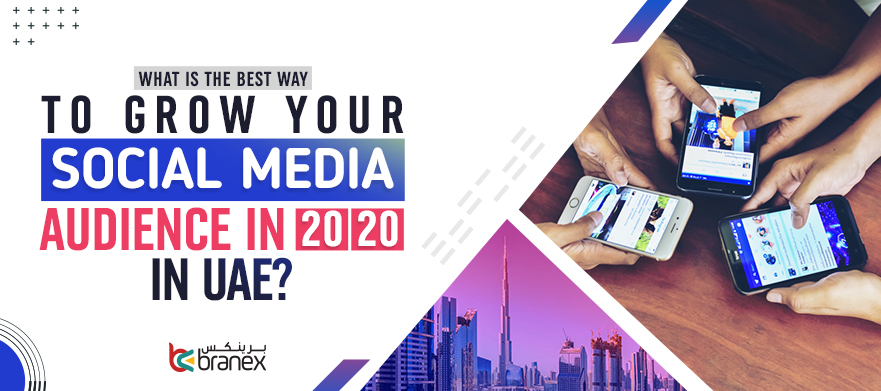 Grow Your Social Media Audience in 2020